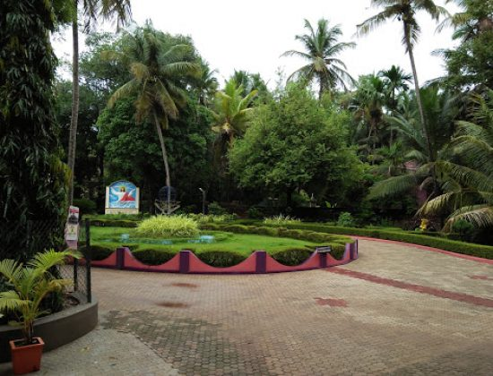 Divine Call Centre, Mulki